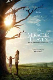 Miracles du Paradis (2016)